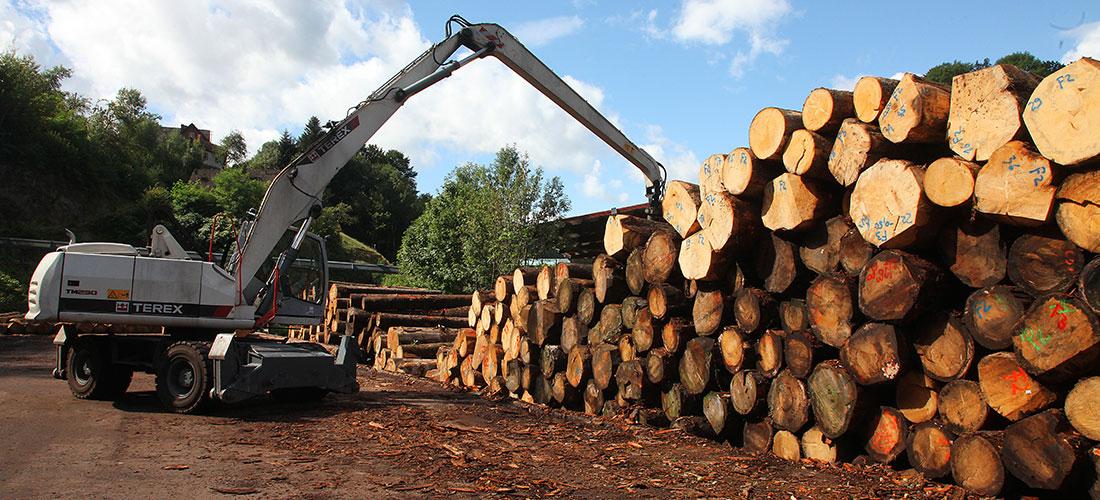 Brettsperrholz aus Baden-Württemberg?